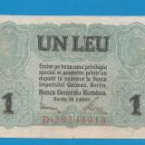 1 leu 1917 BGR 1