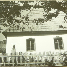 Satul Cosbuc - bistrita nasaud - circulata 1960 - 2+1 gratis - RBK12535 - Carte Postala Oltenia dupa 1918, Fotografie