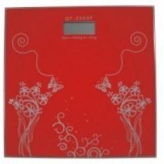 Cantar digital Hausberg Spring HB-6003-1