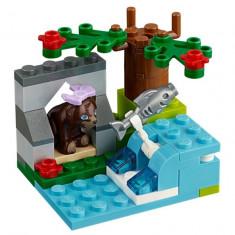 Noptiera - Raul ursului brun (41046)