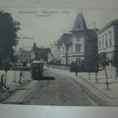 SIBIU / Hermannstadt - Tramvai, CARTE POSTALA - Carte Postala Transilvania pana la 1904, Necirculata, Fotografie