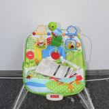 Scaunel copii Green Garden Bouncer Fisher Price (120)