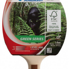 Paleta ping pong - Paleta tenis de masa Allround Green Series 600