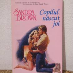 Roman dragoste - COPILUL NASCUT JOI-SANDRA BROWN