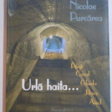 URLA HAITA , PITESTI , CANAL , GHERLA , JILAVA , AIUD de NICOLAE PURCAREA , 2012