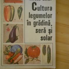 Carti Agronomie - ZAHARIA SUCIU--CULTURA LEGUMELOR IN GRADINA, SERA SI SOLAR - 1987