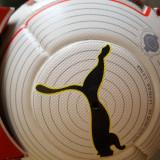 Minge fotbal Puma EvoPower 1