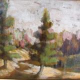 Peisaj montan, tablou in ulei pe panza - Pictor roman, Natura, Impresionism