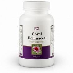 Colier argint - Coral Echinacea (90 capsule)