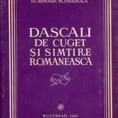 Carte Sociologie - Antonie Plamadeala - Dascali de cuget si simtire romaneasca - 587120