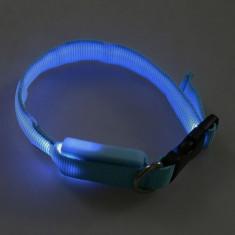 Zgarda cu led albastru pentru caine mic si mediu
