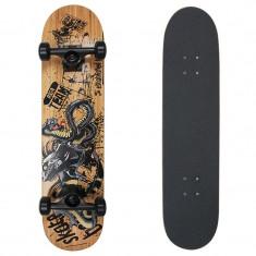 Skateboard Area REPhall 31x7, 5''