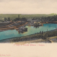 CRAIOVA, O VEDERE A PARCULUI BIBESCU - Carte Postala Oltenia pana la 1904, Necirculata, Printata