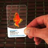 La comanda carti de vizita plastic transparent sau mat policromie printare UV