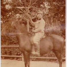 Fotografie militar cu sabie calare 1917 Austria Ungaria - Fotografie veche