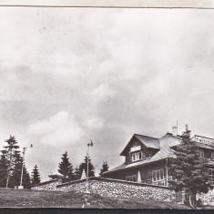 Bnk cp Iacobeni - Jud Suceava - Cabana Mestecanis - circulata - Carte Postala Bucovina dupa 1918, Printata